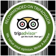 Free Tour Valencia en Tripadvisor