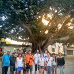 free-walking-tour-valencia-7
